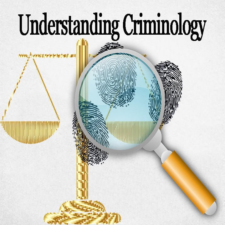 Scopes and division of study in criminology
